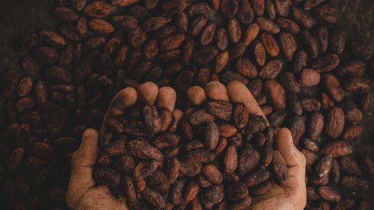 chocolate_manos